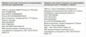 Оплатить госпошлину за паспорт уфмс центрального района города новосибирска