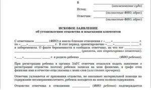 Как подать на алименты на жену в украине