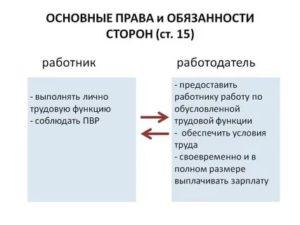 Основные права и обязанности сторон трудового договора