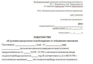 Заявление потерпевшего о согласии на удо образец