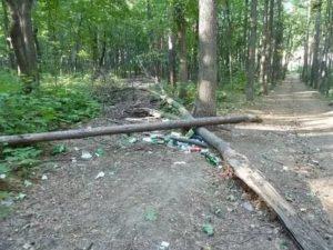 Аренда земли в парках