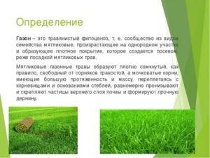 Что такое газон согласно пдд рф в москве
