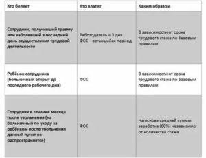 Сроки предоставления больничного листа в фсс 2020 году