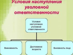 Назовите три общих условия наступления уголовной ответственности  установленныеуголовным кодексом рф