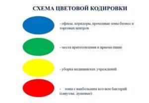 Цвет маркеровки уборочного инветаря в школе