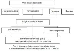 Формы собственности и формы хозяйствования в сельском хозяйстве