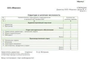 Структура и штатная численность работников форма